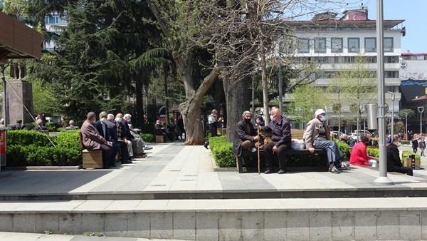 Trabzon'da park ve bahçeler doldu