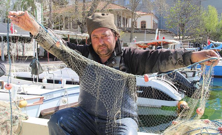 Küçük balıkçıların başı yunuslarla dertte