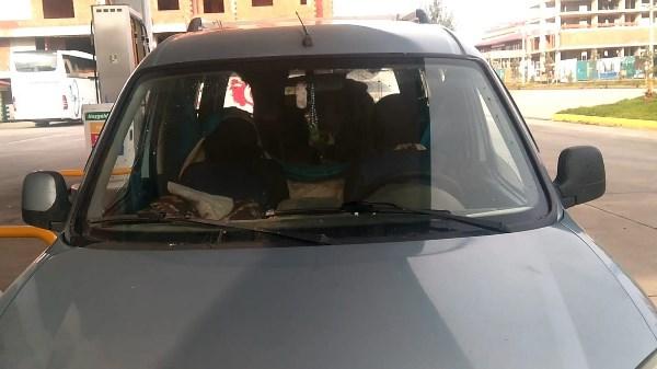Rize'de trafikte ilginç görüntü! Yaylaya böyle göç etti