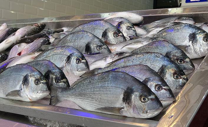Av yasağı sonrası tezgahlar kültür balıklarına kaldı