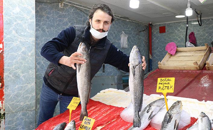 Balık satışları azaldı fiyatlar düştü