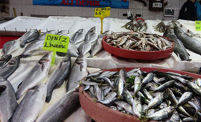 Trabzon'da balıkçı esnafının yüzü yine gülmedi