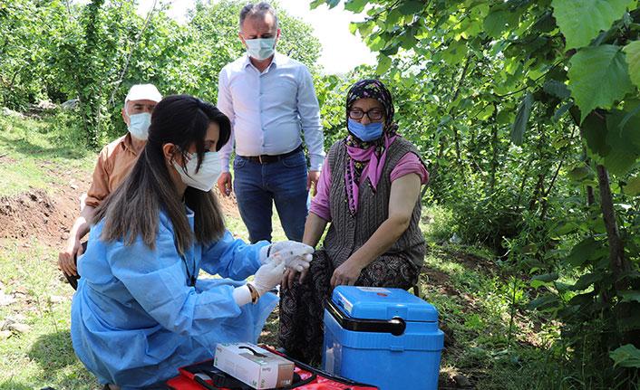 Samsun'da aşı inadı yüzde 28,42