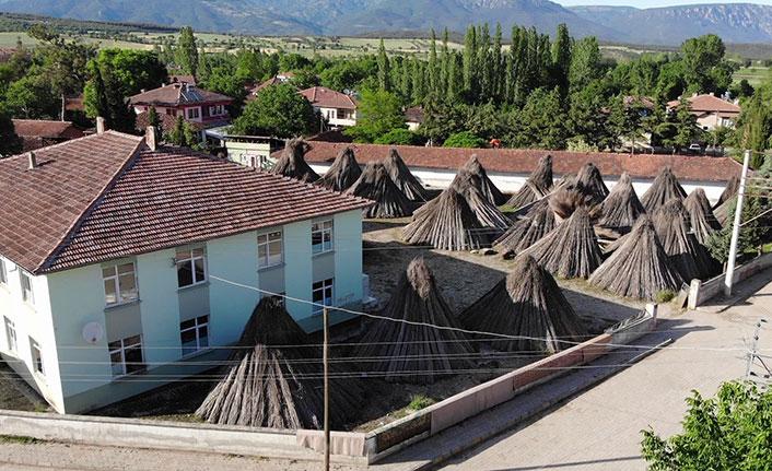 Türkiye'nin kenevir merkezinde su sorunu yaşanıyor