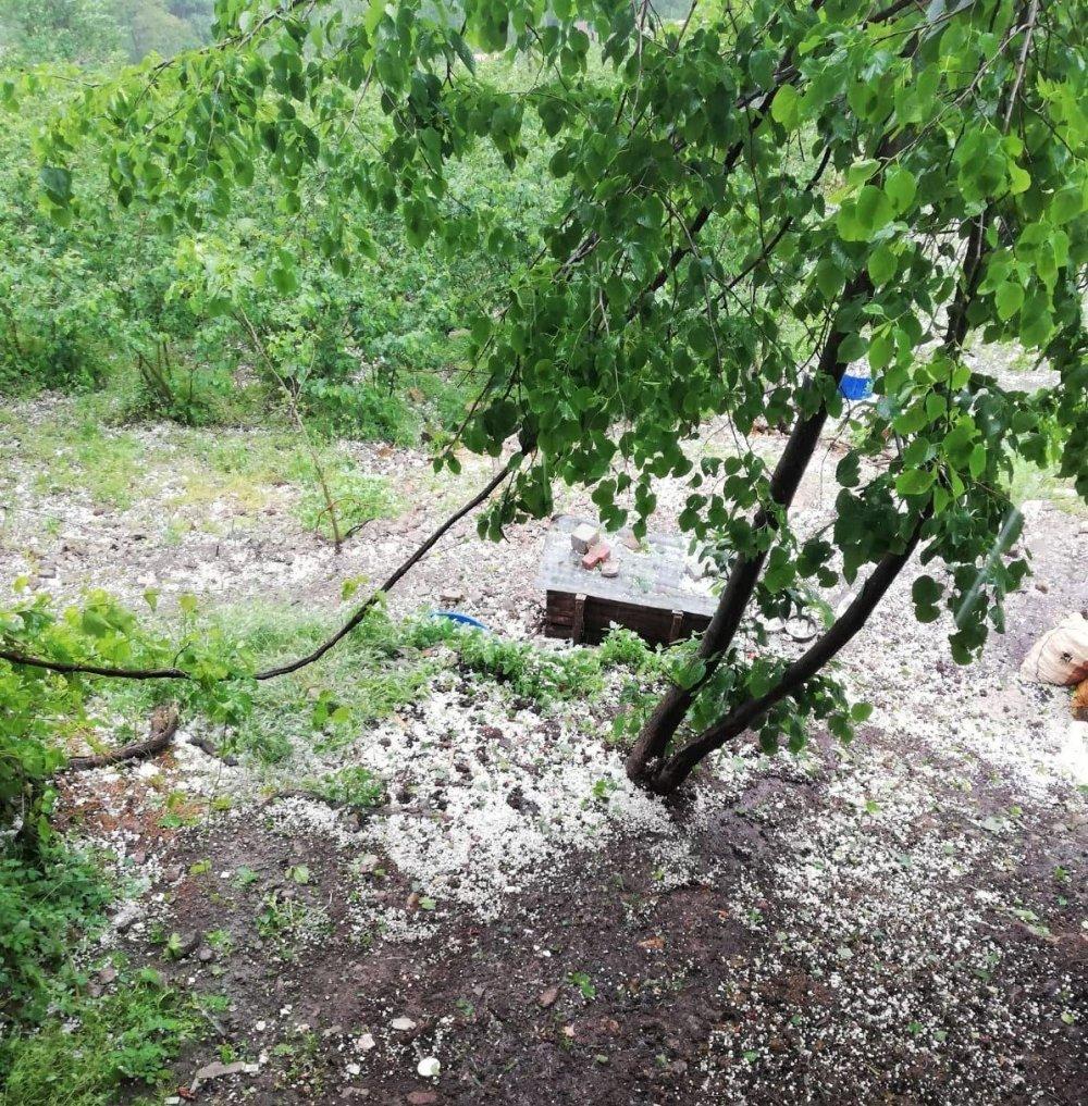 Ordu'da dolu yağışı hasara yol açtı