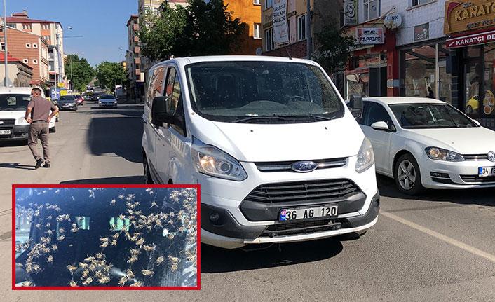 Aracın içinde arı kovanı devrildi, şoför kendini dışarı zor attı