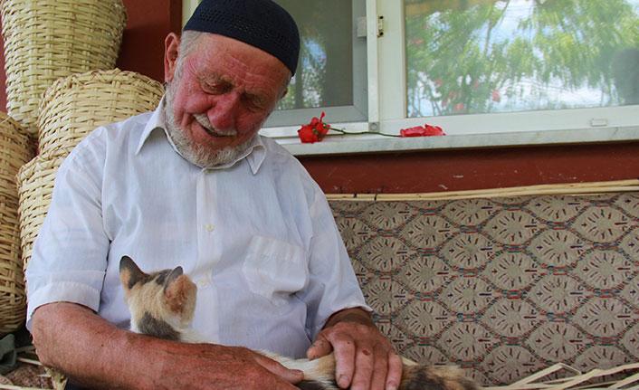 Trabzonlu asırlık çınarın hüzünlendiren hikayesi