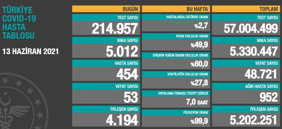 Türkiye'de günün koronavirüs raporu 13.06.2021
