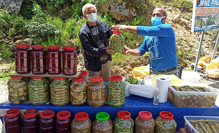 Yaylada yöresel organik pazar açıldı