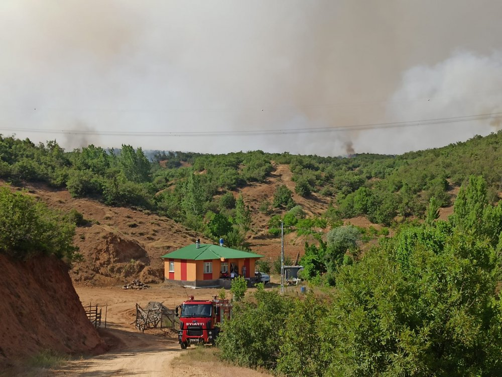 14 gün sonra aynı yerde orman yangını