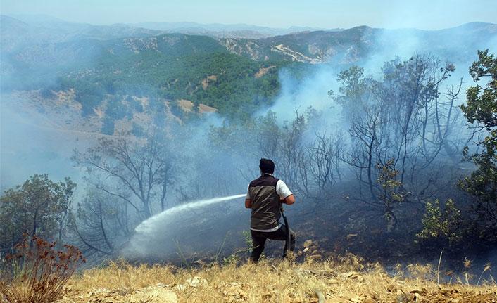 Orman yangını 3 gündür söndürülemiyor