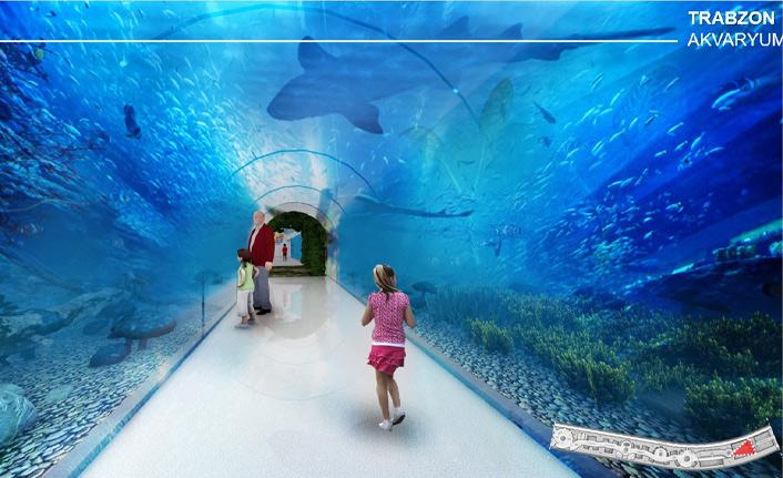 Trabzon'da Tünel Akvaryum projesinde son durum ne?
