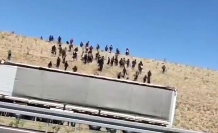 Kaçak yollarla gelip yerleşim yerlerine girdiler!