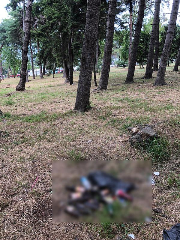 Trabzon'da nefes almaya gelenler iğrenç görüntü ile karşılaşıyor