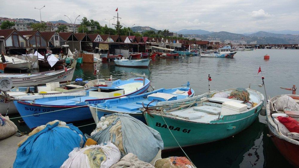 Trabzon'da mezgit tarihinin en yüksek fiyatını gördü