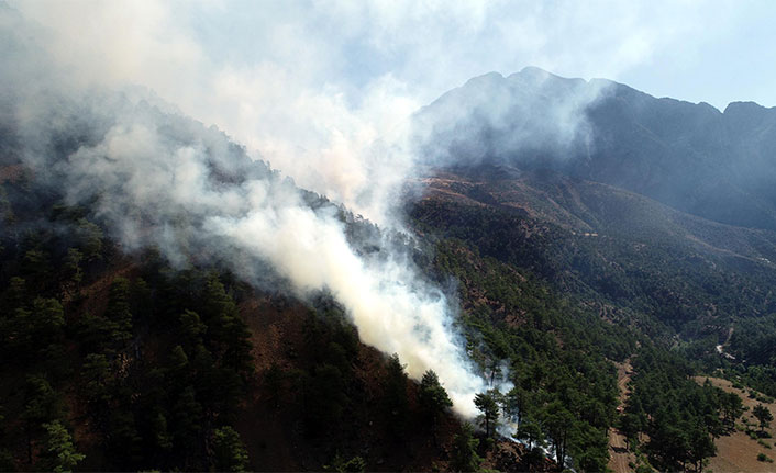 Kayseri'de devam eden orman yangınına 100 kişilik ekiple müdahale