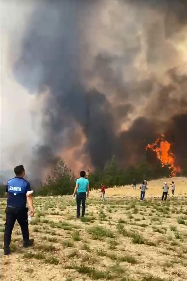 Isparta ve Denizli'de orman yangını