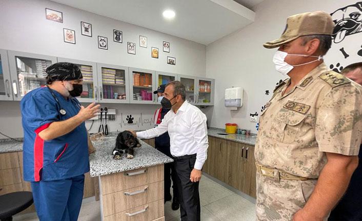 Ordu'da köpeğe eziyet eden sürücü yakalandı