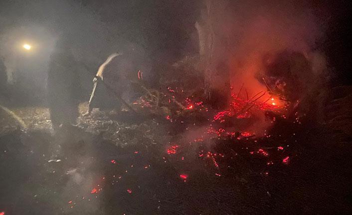 Karadeniz'de yıldırım düşen ormanda yangın çıktı