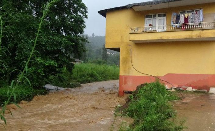Rize'de şiddetli yağış dereleri taşırdı, heyelanlar meydana geldi