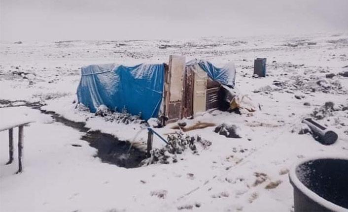Karadeniz'de yağan kar besicileri zora soktu