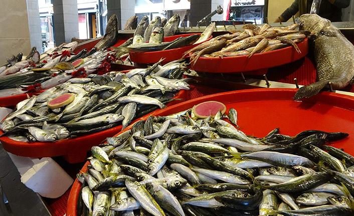 Trabzon'da balık fiyatları nasıl? İstavrit bolluğu var
