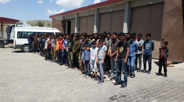 223 kaçak göçmen yakalandı