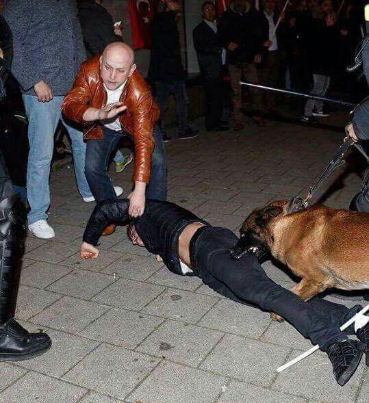 Hollanda polisinin köpekle saldırdığı Trabzonlu o anları anlattı