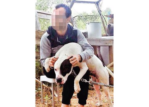 Mahkeme Trabzonlu gencin köpeğini silah saydı!