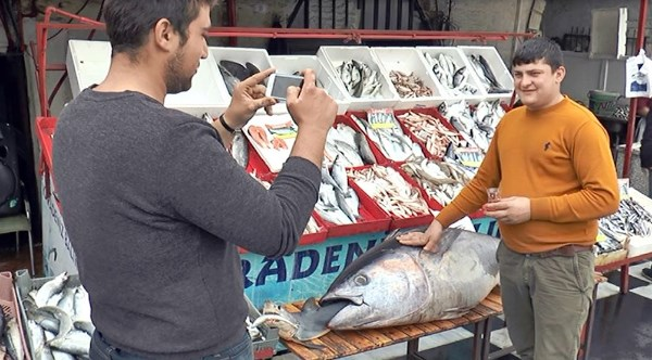 2 metrelik ton balığı vatandaşların ilgi odağı oldu