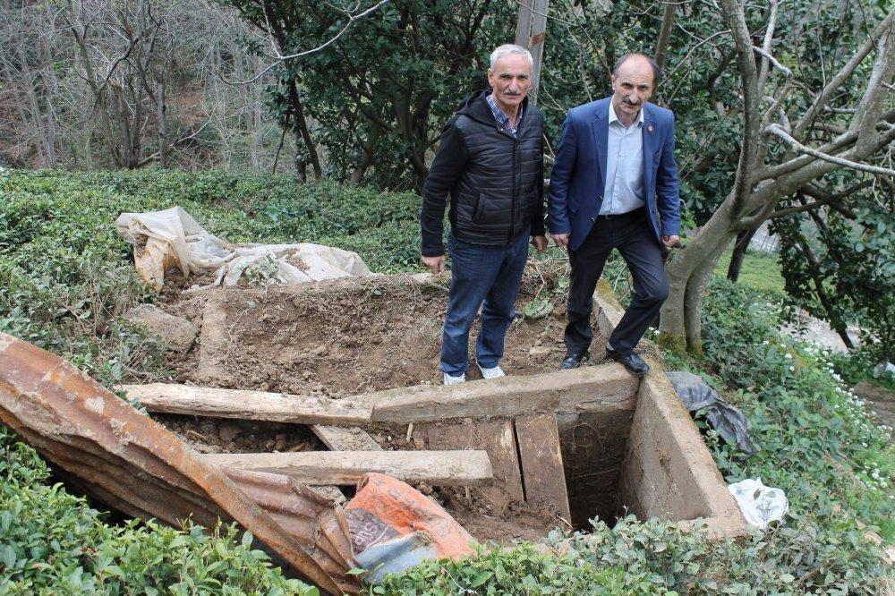 Rize'de ayılar mezarlara dadandı