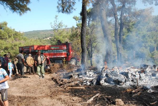 10 hektardan fazla alan kül oldu