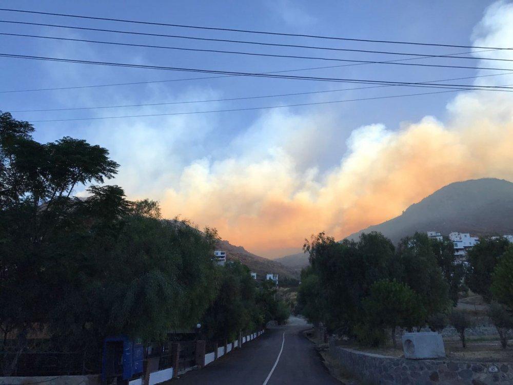 Ciğerlerimiz yandı: 20 Hektar alan