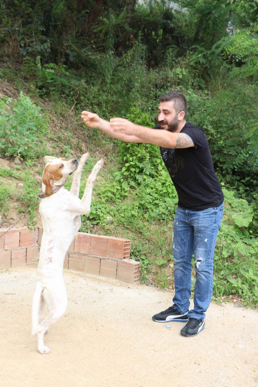 Trabzon'da bu köpek kolbastı oynuyor!