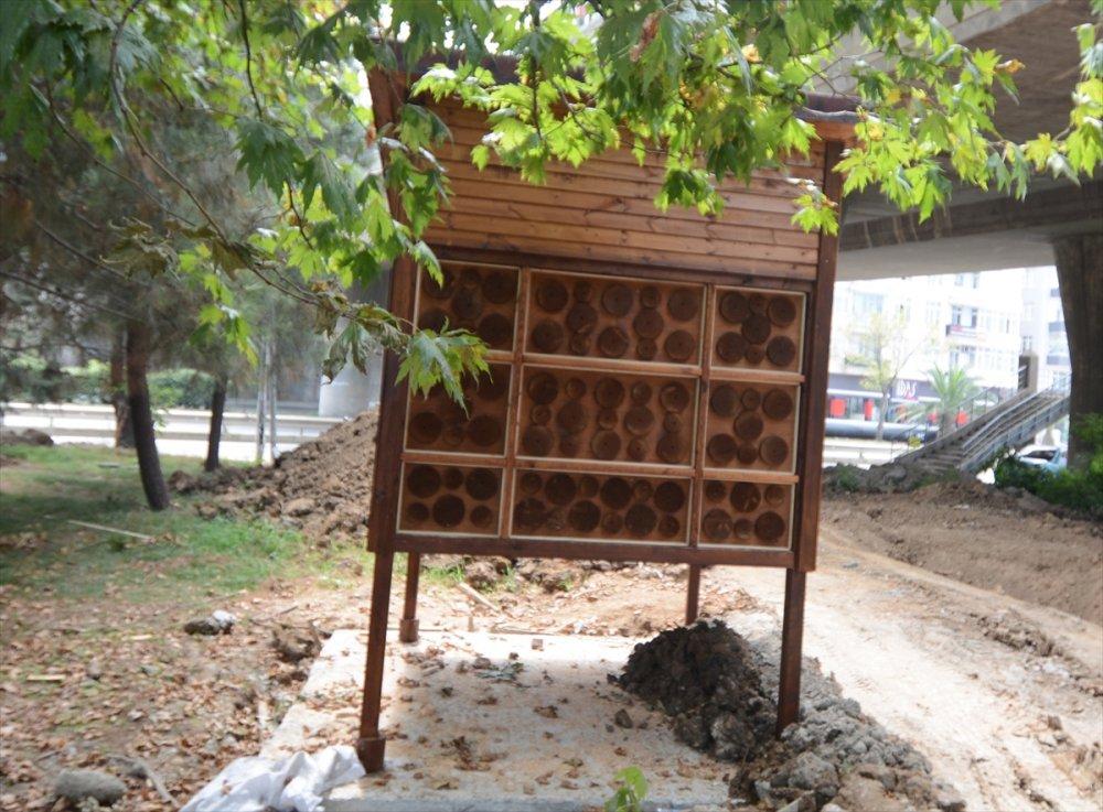 Trabzon'da yaban arıları için otel!