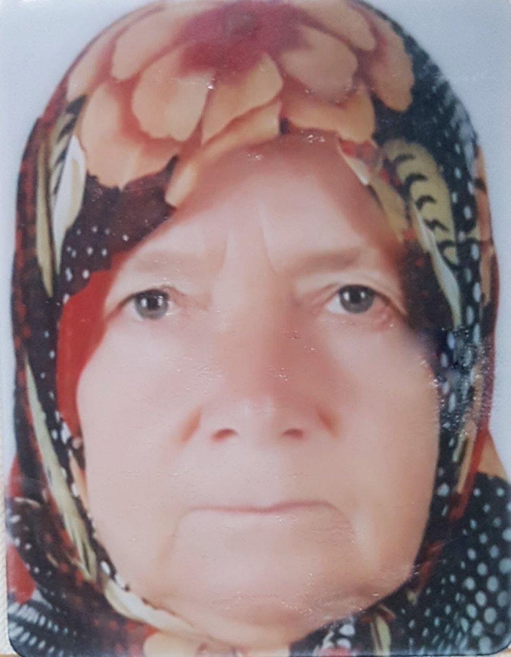 Yaşlı kadın böğürtlen toplarken öldü