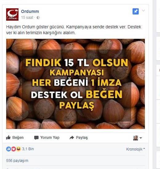 Fındık için sosyal medyada kampanya başlattılar