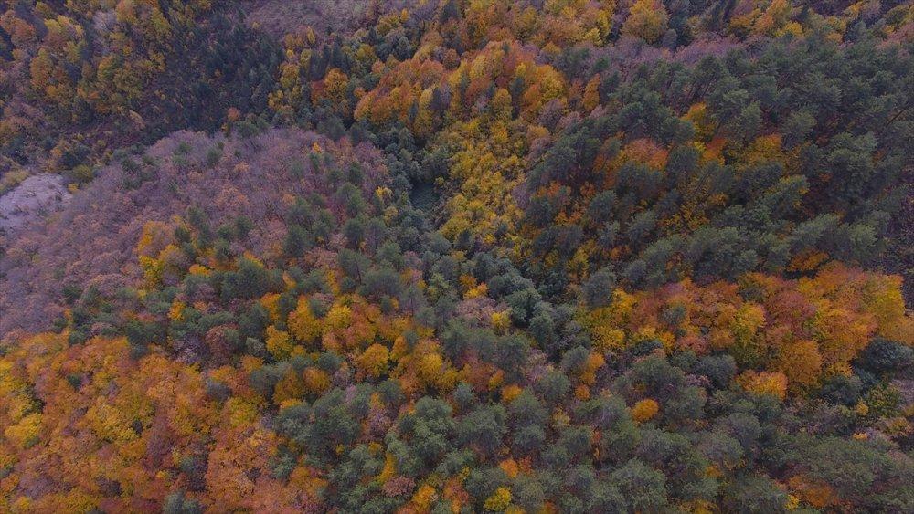 Kastamonu'da sonbahar güzelliği