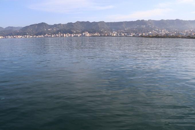 Nesli tükenmekte olan balık Rize'de görüldü