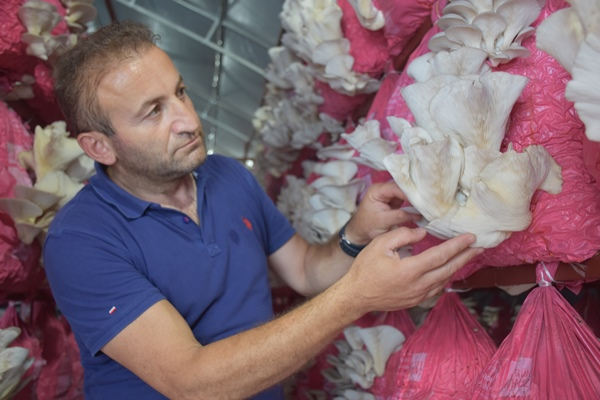 Belçika'dan geldi Trabzon'da üretime başladı