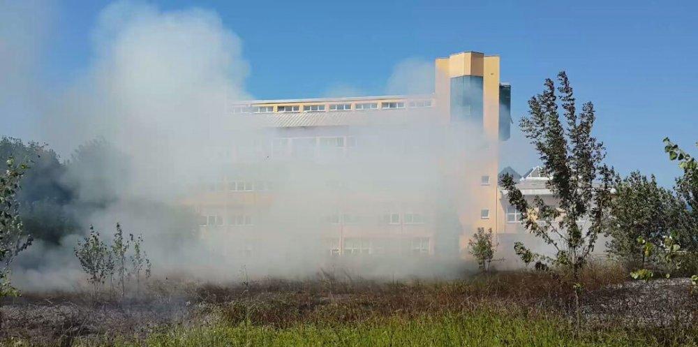 KTÜ'de yangın: 5 dönüm alan zarar gördü