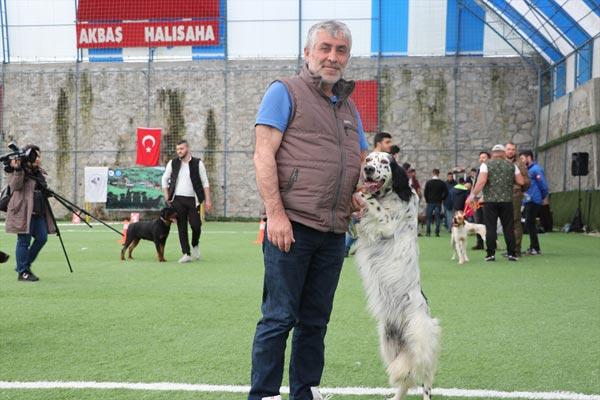 Trabzon'da insanların en sadık dostları yarıştı
