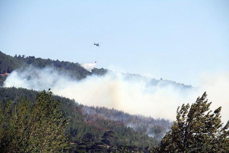 Kaz Dağları'nda feci yangın! 4 ayrı noktada birden
