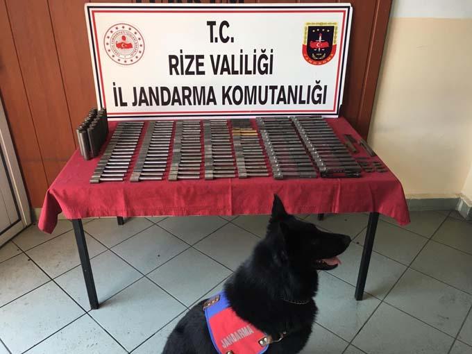 Rize'de baskın! Dedektör köpekten kaçamadılar