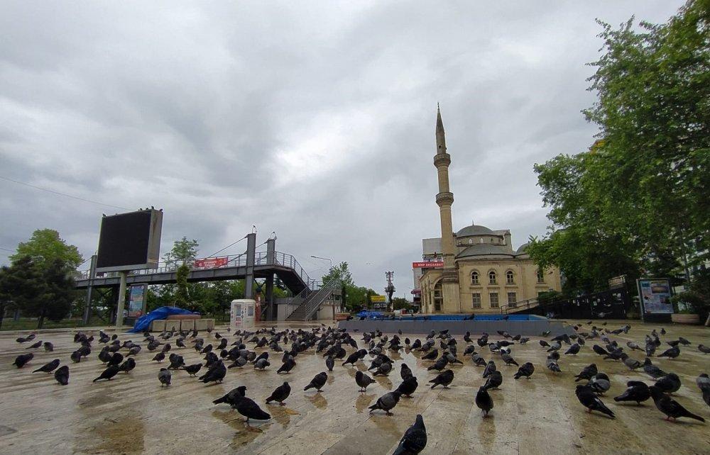 Akçaabat'ta meydan güvercinlere kaldı