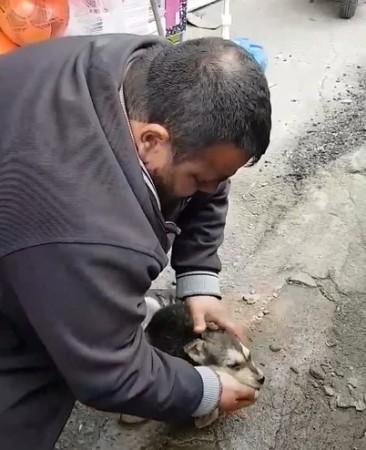 Rize'de vatandaştan hayran bırakan davranış - Köpeği hayata döndürmek için...