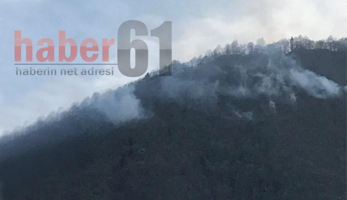 Trabzon'da bir yangın daha!