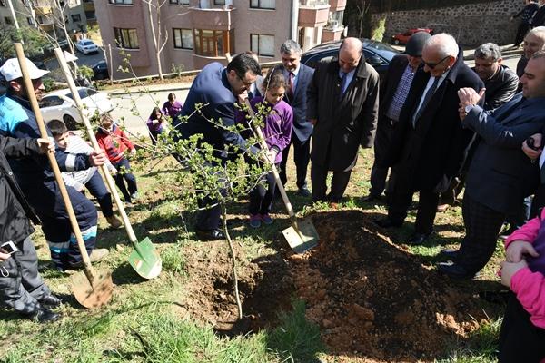 Trabzon'da minikler, hatıra ormanı oluşturdu