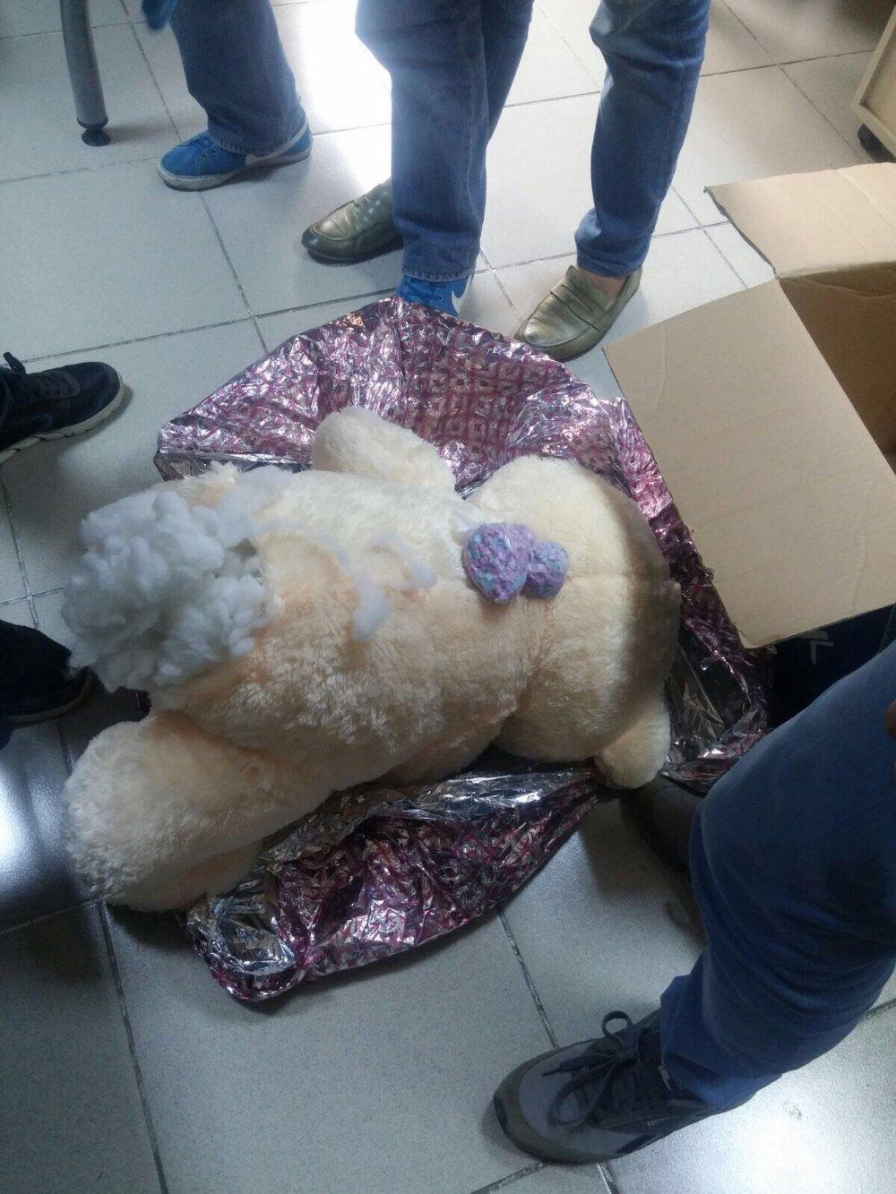 Trabzon'da ayının içinde uyuşturucu yakalandı!