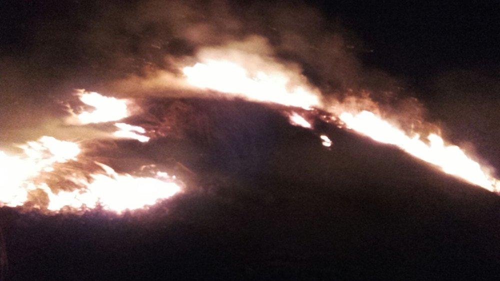 Yomra'daki yangına vatandaş koştu